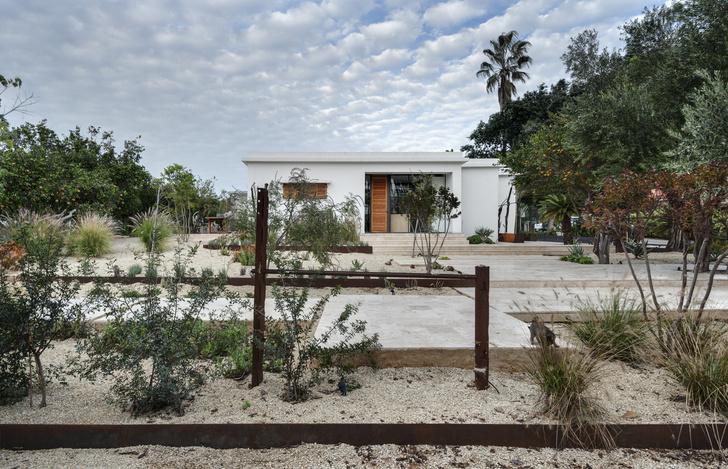 Фото №2 - Средиземноморская вилла в апельсиновой роще в Израиле