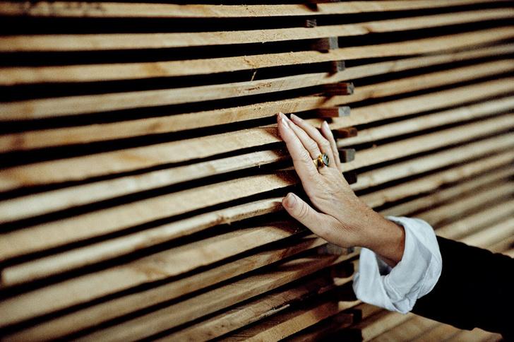 Фото №5 - Пианиссимо: как устроен лучший в мире рояль