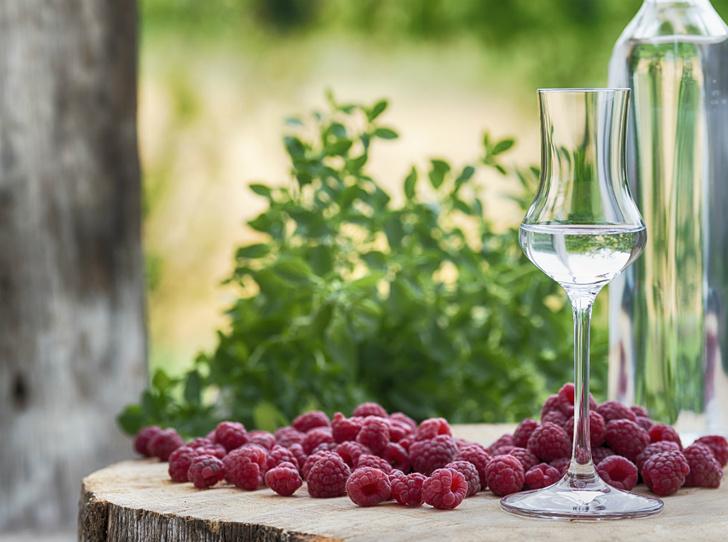 Фото №3 - Вкус Италии: что такое граппа и как ее правильно пить