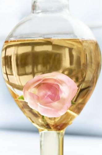 Фото №3 - Новое сокровище в Dior Prestige: универсальное средство для кожи, подобной лепестку розы