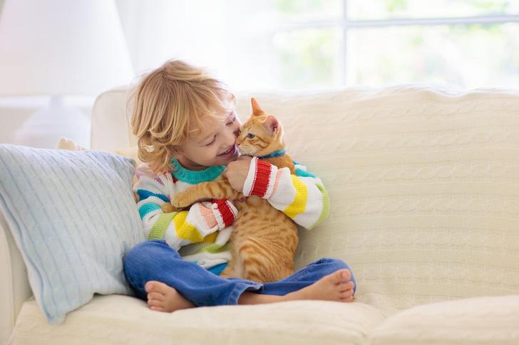 дети и котята смешные видео