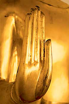 Фото №3 - Почему Будда сидит в позе лотоса?