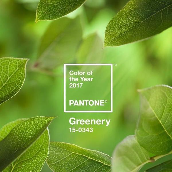 Фото №8 - Как менялся цвет года Pantone последние 10 лет