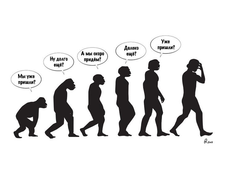 Фото №1 - 29 смешных картинок про эволюцию