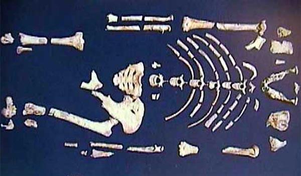 Фото №1 - Люди с прошлым, или скелеты в песке