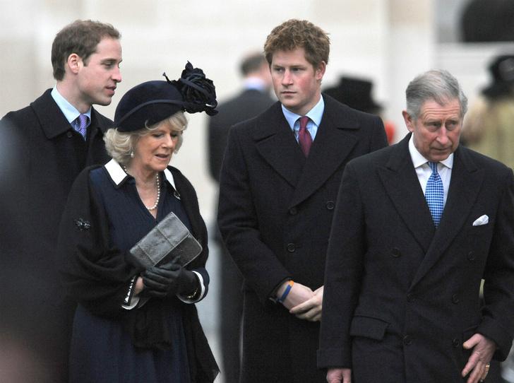 Фото №1 - Как Уильям и Гарри отреагировали на помолвку Чарльза и Камиллы