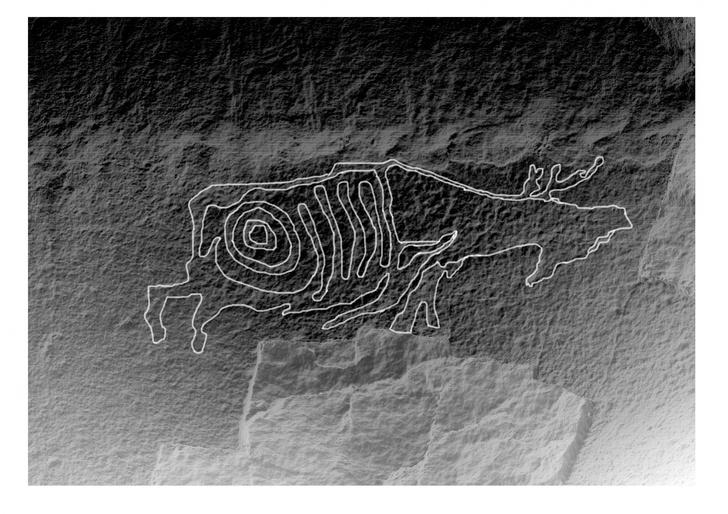 Фото №1 - В Хабаровском крае обнаружили петроглиф с изображением лося