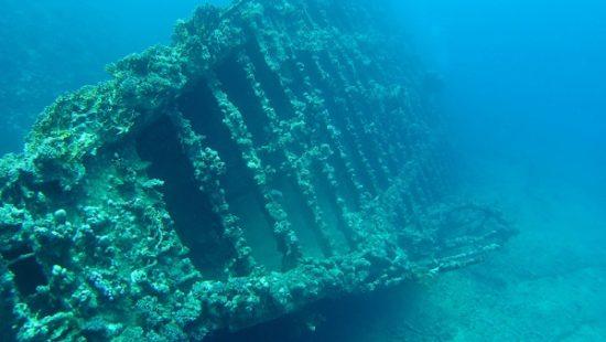 Фото №1 - Дайверы обнаружили затонувший корабль со специями у берегов Португалии