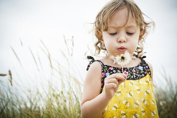 Фото №1 - Главные опасности, которые подстерегают детей на даче