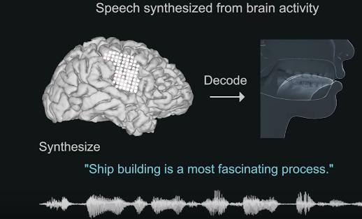Фото №1 - Найден способ воспроизводить речь по активности мозга