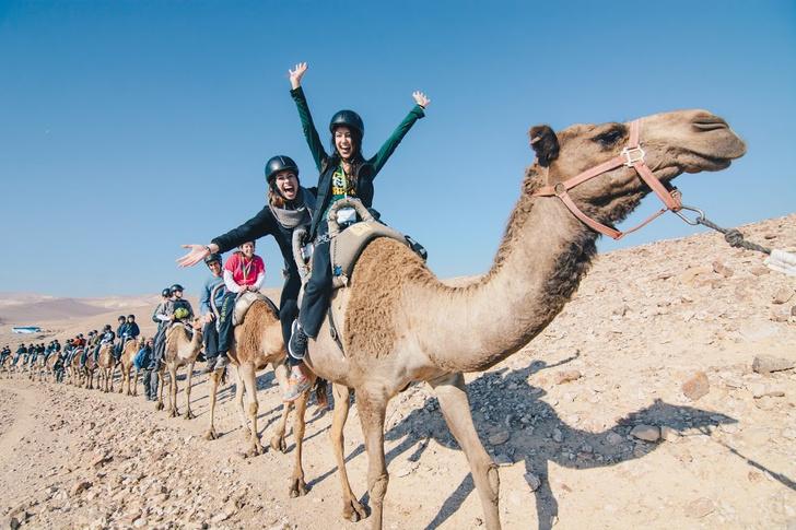 Фото №3 - Познать себя: Таглит отправляет молодежь в бесплатные поездки по Израилю