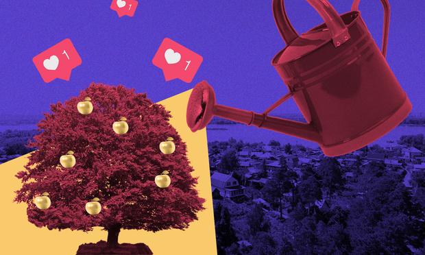 Фото №6 - Деревья в городе: как и для чего озеленяют общественные пространства