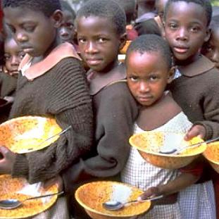 Фото №1 - Беда от цен на еду