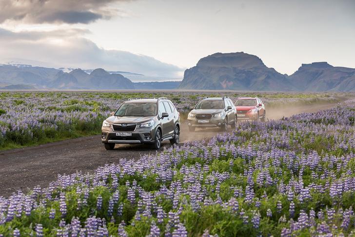 Фото №12 - Испытание исландским бездорожьем