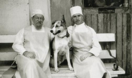 Фото №1 - Доктор Борменталь из «Собачьего сердца» погиб от COVID-19. Борис Плотников несколько дней провел на аппарате ИВЛ