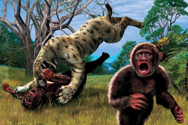 Фото №1 - Родословная «южных обезьян»