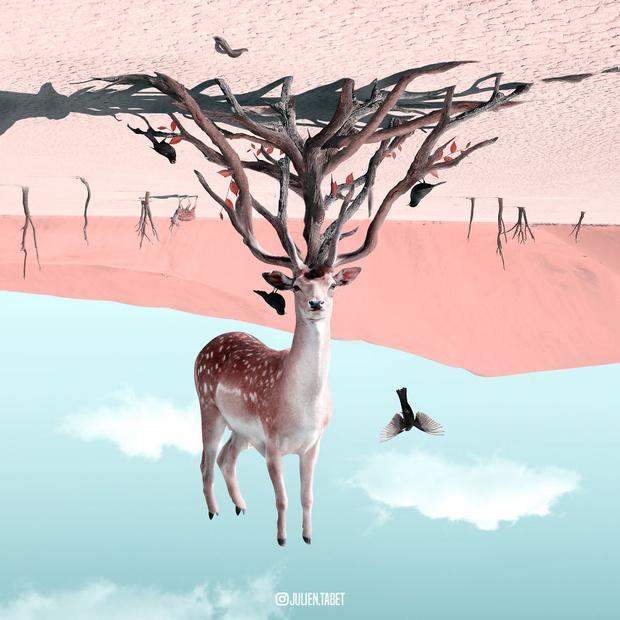 Фото №1 - Художник недели: фэнтезийные животные Жульена Табе