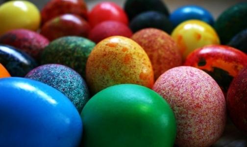Фото №1 - Как покрасить пасхальные яйца без вреда для здоровья