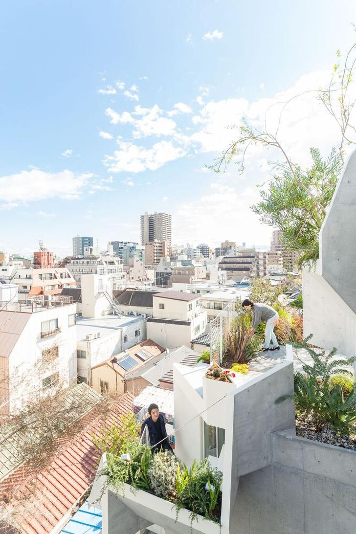 Фото №3 - Бетонные джунгли: дом в Токио