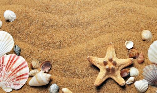 Фото №1 - В Роспотребнадзоре назвали инфекции, которыми можно заразиться на пляже. Некоторые из них страшнее ковида