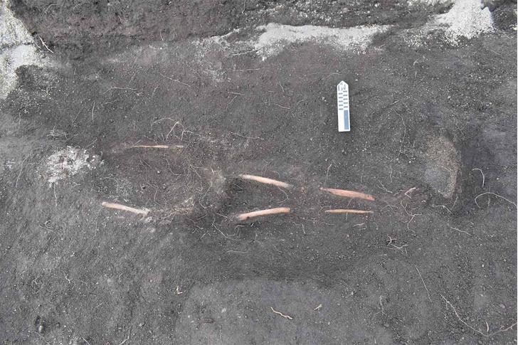 Фото №1 - В Эквадоре обнаружено древнее кладбище инков