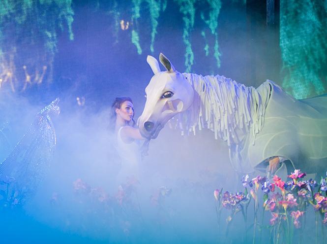 """Выход лошади в конце шоу """"Фавориты луны"""""""