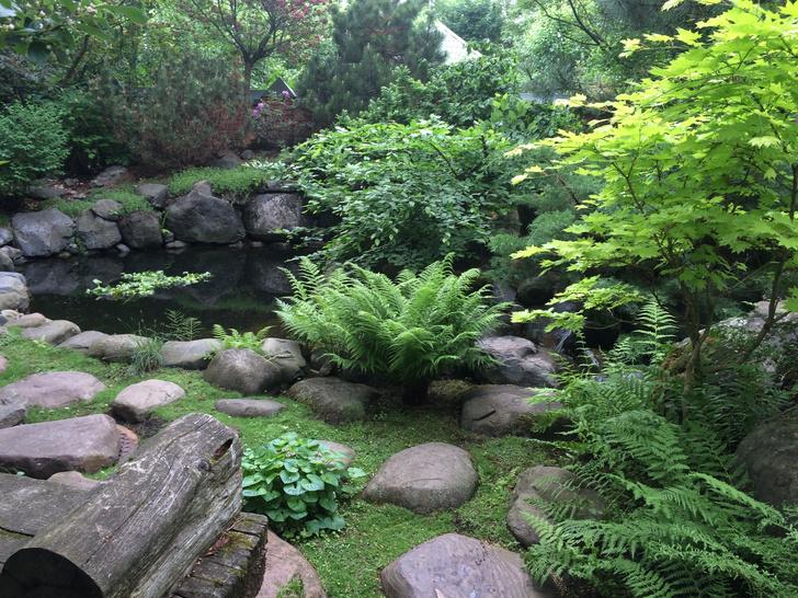 Фото №16 - ELLE DECORATION в саду у дизайнера Ирины Глик