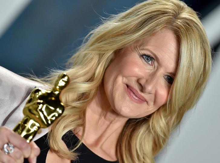 Фото №1 - Oscar Makeup: как повторить макияж Лоры Дерн с красной дорожки?