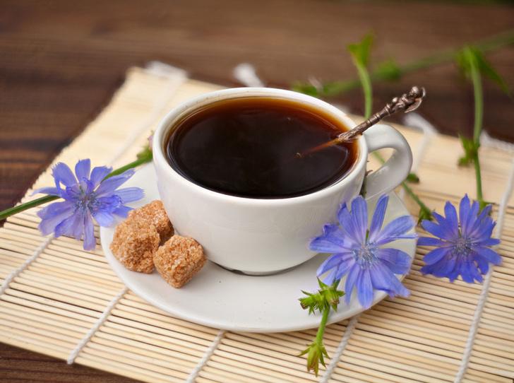 Фото №1 - Без кофеина: чем полезен цикорий