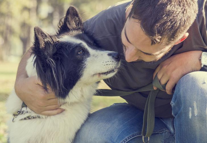 Фото №1 - Ученые выяснили, нравится ли собакам, когда их обнимают