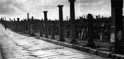 Фото №3 - Римские путешествия