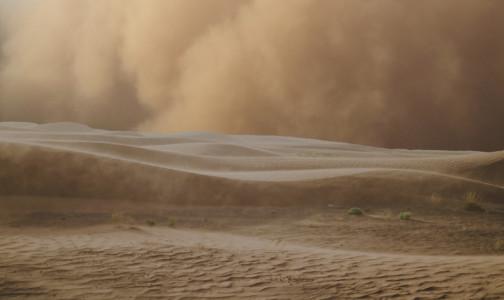 Фото №1 - Петербургский пульмонолог: Надвигающееся облако пыли из Сахары вряд ли опаснее для здоровья, чем обещанный снегопад