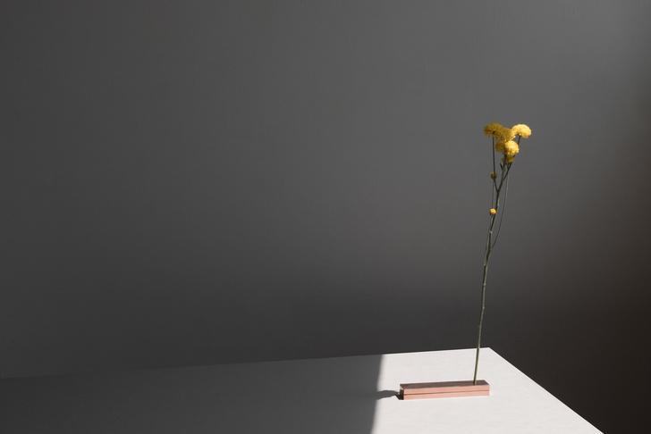 Фото №4 - No Vases: вазы без ваз