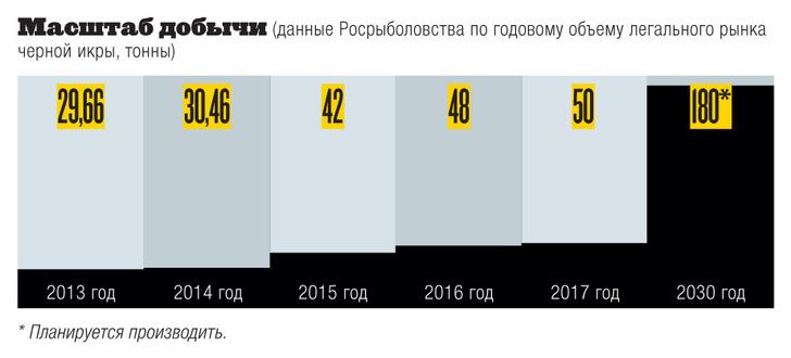 Фото №6 - Инфографика: черный рынок