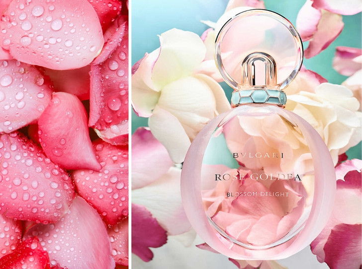 Фото №1 - Аромат дня: Rose Goldea Blossom Delight от BVLGARI