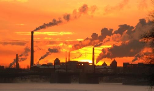 Фото №1 - Роспотребнадзор: Из-за грязного воздуха петербуржцы чаще умирают от рака