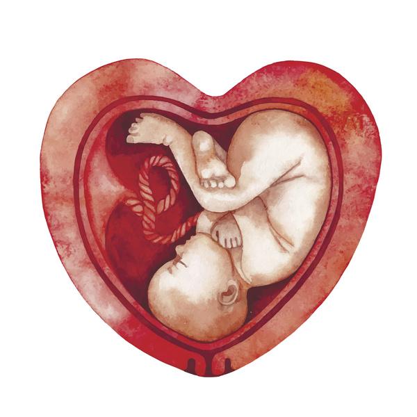 Фото №1 - Дородовая генетическая диагностика: самое важное, что о ней стоит знать