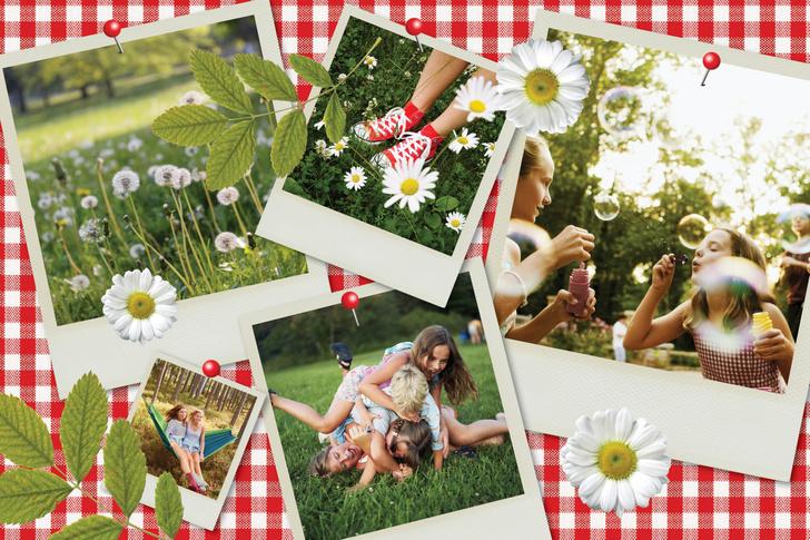 Фото №1 - Как устроить идеальный пикник?