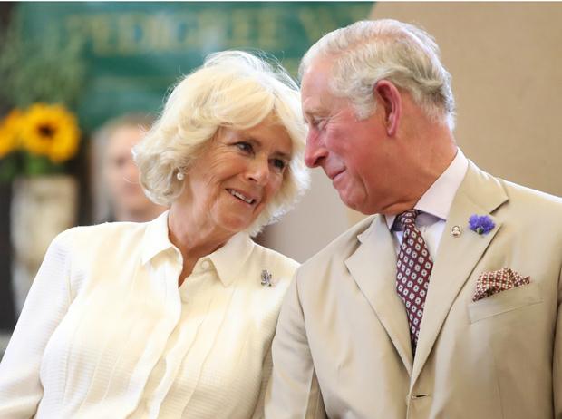 Фото №3 - 8 веских причин, почему британцы не хотят видеть принца Чарльза на троне