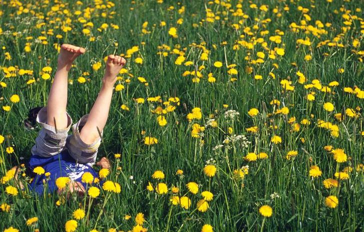 Фото №1 - Как предотвратить аллергию