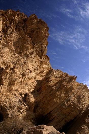 Фото №2 - По сторонам дороги в пустыне Негев