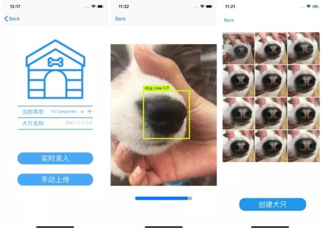 Фото №1 - В Китае придумали приложение, распознающее животных по отпечатку носа