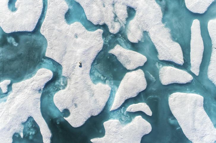 Фото №1 - Ученые впервые зарегистрировали разрушение древних ледников в Арктике