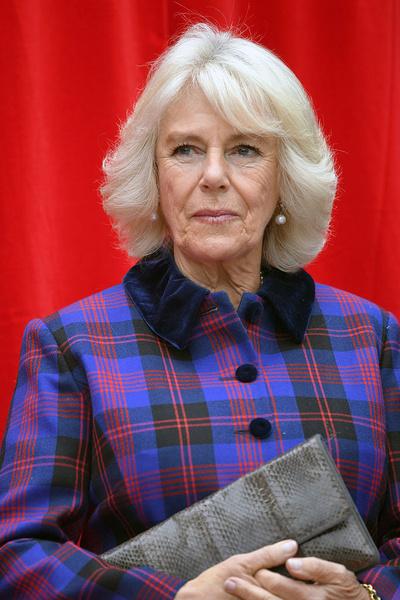 Фото №7 - Герцогиня Кембриджская не станет следующей королевой