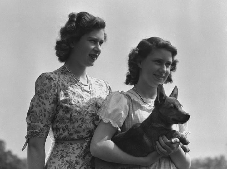 Фото №9 - Елизавета II и ее корги: история главной королевской страсти