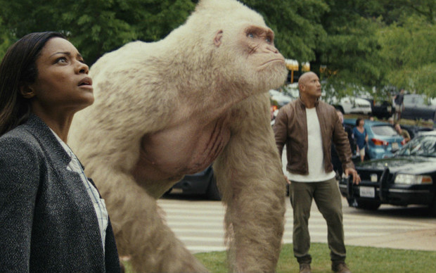 Фото №1 - Что посмотреть: 5 фильмов про самых крутых обезьян