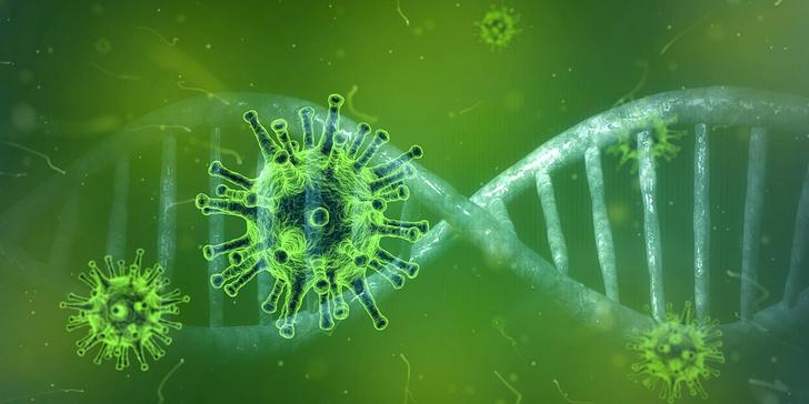 новый штамм коронавируса