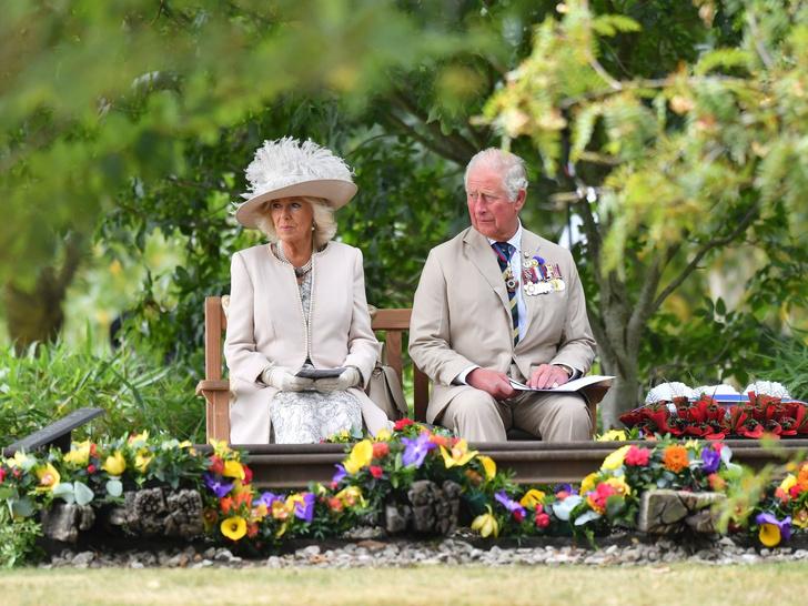 Фото №3 - Главная причина, почему Чарльзу и Камилле стоит уступить престол Кембриджским