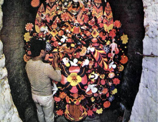 Фото №1 - Сейба — древо жизни