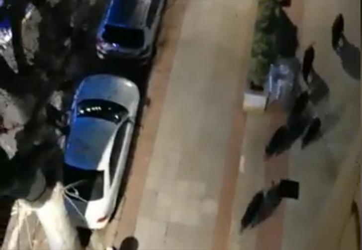 Фото №1 - Город в Каталонии во время карантина захватили дикие кабаны (видео)